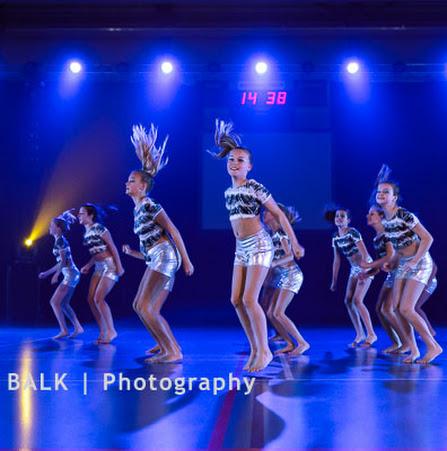 Han Balk Voorster Dansdag 2016-3724-2.jpg