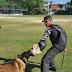 Conheça a companhia da PM especializada em operações com cães