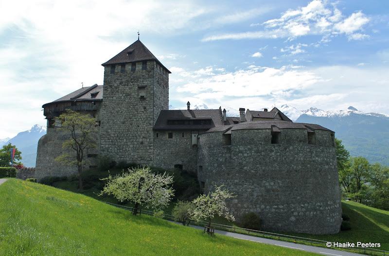 Schloss Liechtenstein (Le petit requin)