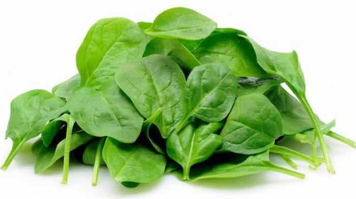 Sayur bayam hijau