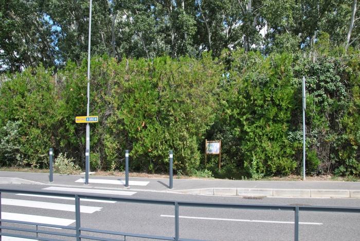 L'entrée du Sentier Nature côté campus de Paul Sabatier, à côté de l'arrêt de bus Naturopole.