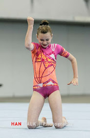 Han Balk Fantastic Gymnastics 2015-9132.jpg
