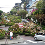 lombard street in San Francisco in San Francisco, California, United States