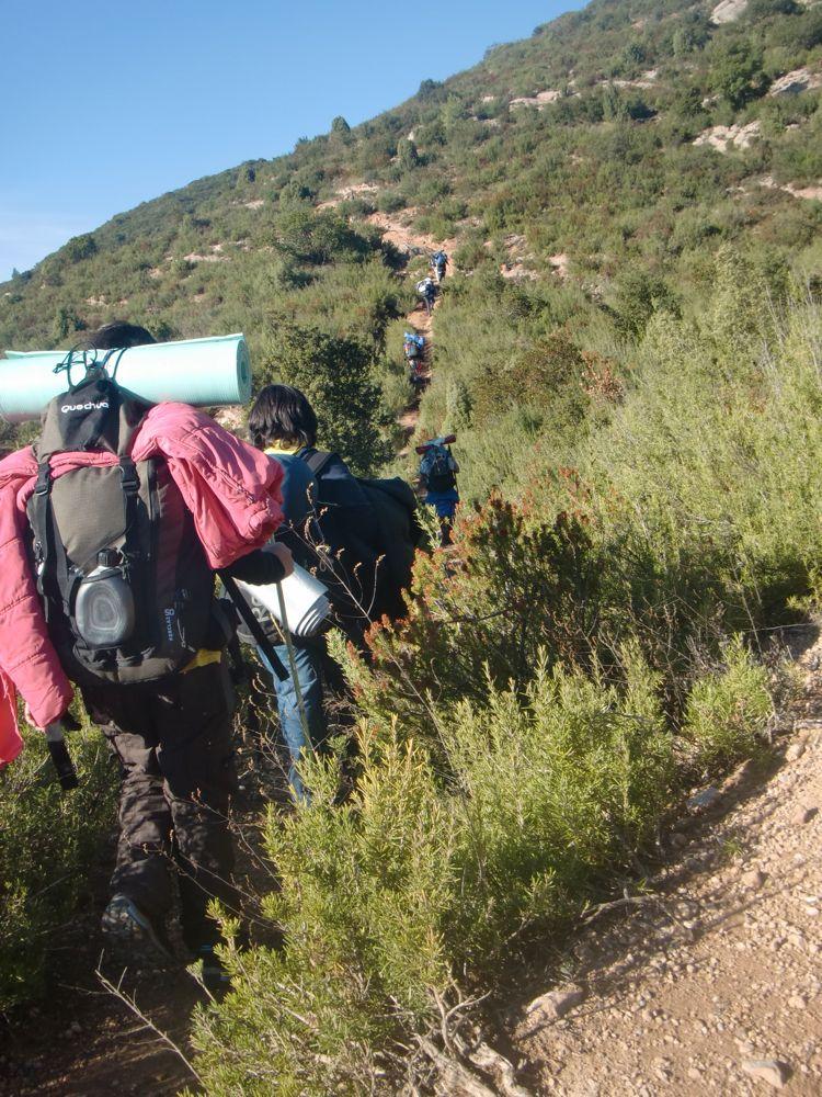 Raiers Sortida Sant Salvador de les Espases 2010 - CIMG0339.JPG