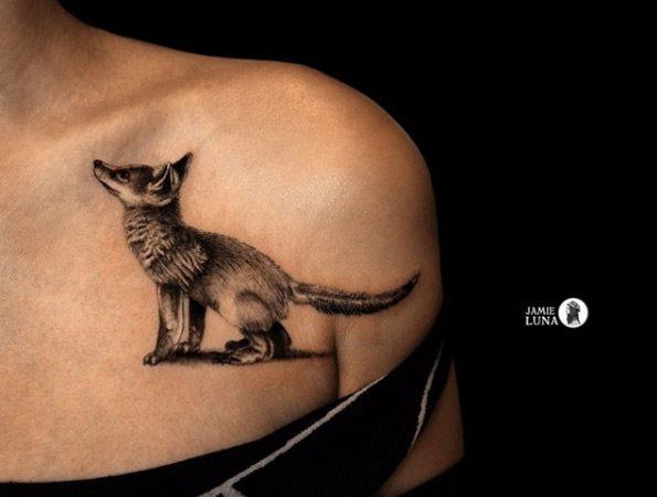 este_adorvel_fox