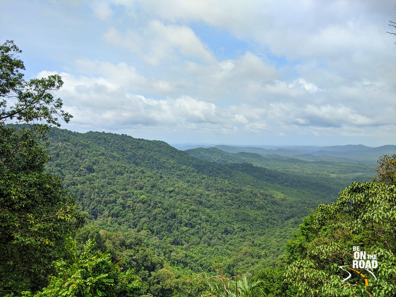 The panoramic green view of Devimane Ghat during the monsoons