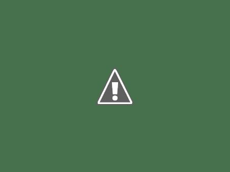 sloganul mandri ca suntem romani interzis in alba si salaj Mândri că suntem români