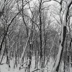 Зимний Вантит 057.jpg