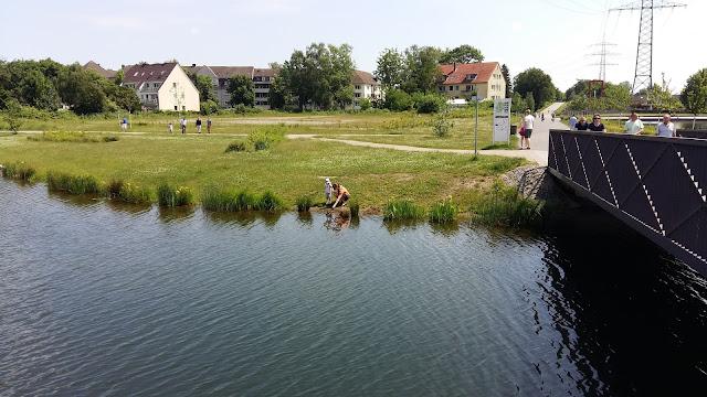 Niederfeldsee in Essen-Altendorf