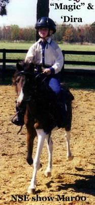 Madira showing Magic - NSE Horse SHow - March 2000