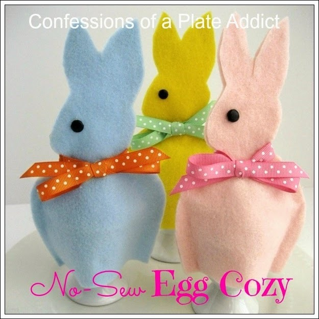 CONFESSIONS OF A PLATE ADDICT No-Sew Egg Cozy