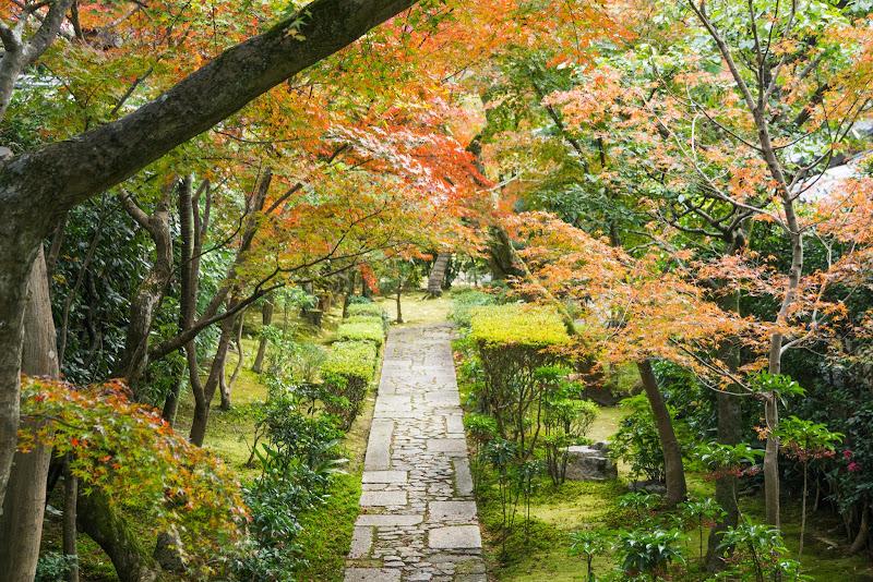 京都 紅葉 龍安寺 写真4