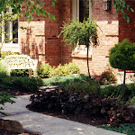 images-Seed and Sod-trees_b6.jpg