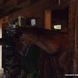2011-10-06 002 - P9050144.JPG