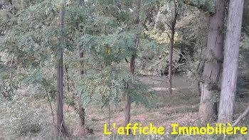 terrain à Lavernose-Lacasse (31)