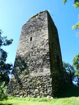 Vente château 20 pièces 525 m2