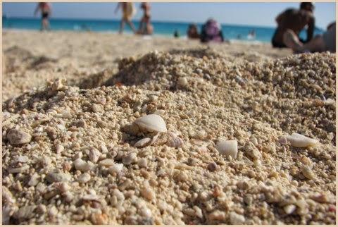 Paplūdimys Egipte