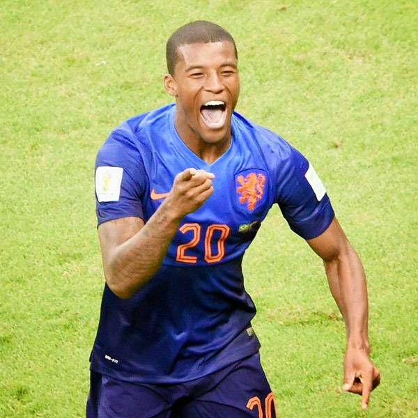 Netherlands' midfielder Georginio Wijnaldum celebrates after scoring a goal during the third place play-off football match between Brazil and Netherlands during the 2014 FIFA World Cup at the National Stadium in Brasilia on July 12, 2014.