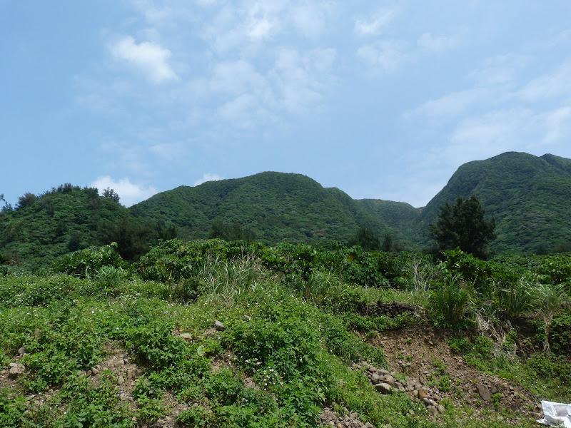 TAIWAN Ile de Lanyu - P1010429.JPG