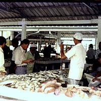 79_Brunei fish market2.jpg