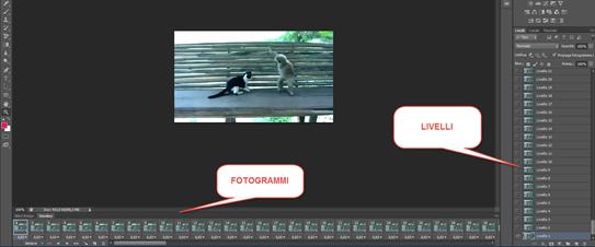 importare-video-photoshop
