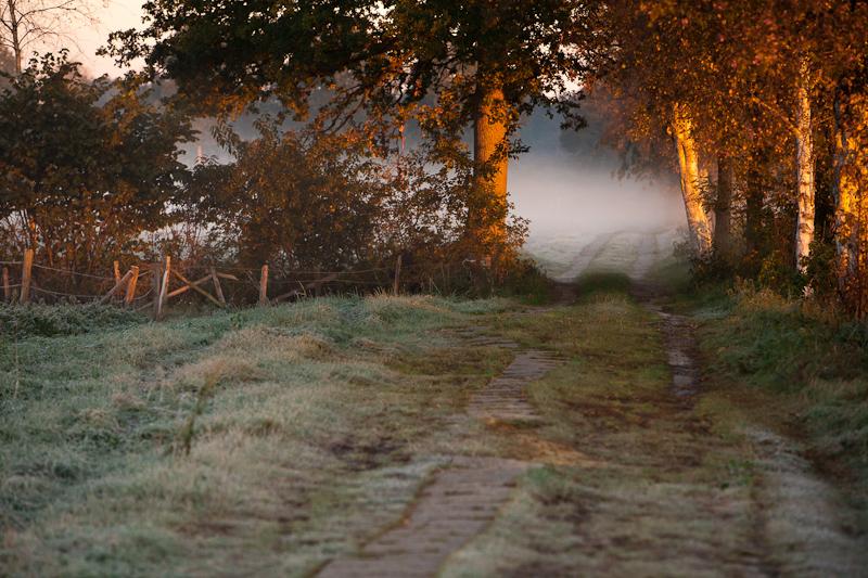 20111015Verluessmoor90.jpg