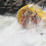 Swimming in the Zambezi