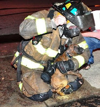 Photo: RFD Lt. Jason Lane on the job...
