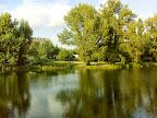 Im Wasserpark II