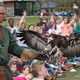 Roofvogelshow op de Vullerschool