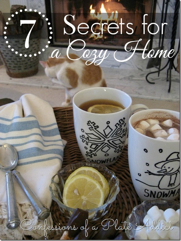 CONFESSIONS OF A PLATE ADDICT Creating a Cozy Home