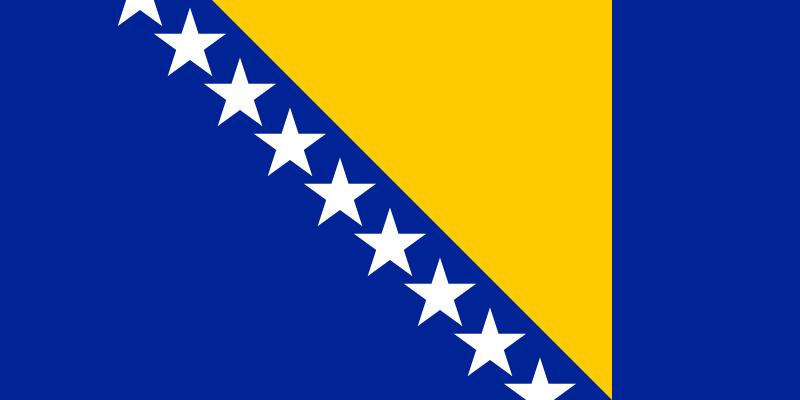 파일:보스니아 헤르체고비나 국기.png