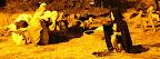 les noctures de ferriere en gatinier le 23 et 24 07 2016 M6.jpg