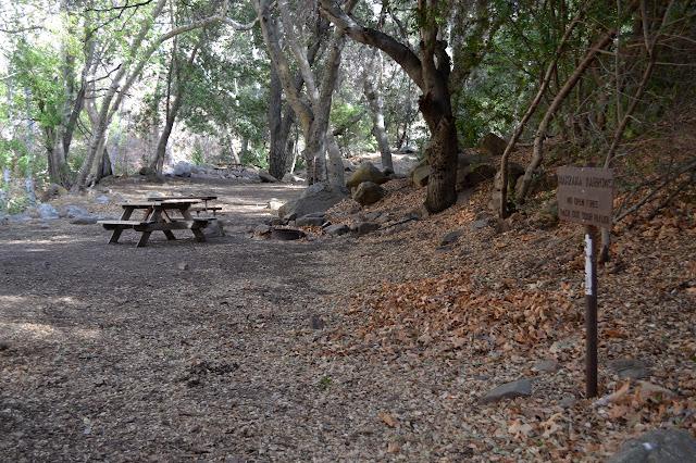 three of the tables at Manzana Narrows Camp