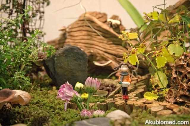Miniature Garden hasil sentuhan Wong Lee Ying dari Malaysia.