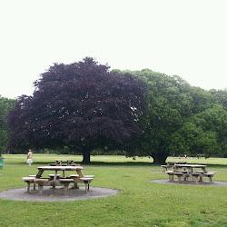 Saint Annes Park's profile photo