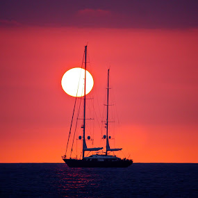 Sailboat Sunset by Venetia Featherstone-Witty - Backgrounds Holiday ( sunset, sailboat on the ocean, romantic sailboat sunset, sailboat, sailboat seascspe, , World_is_RED, silhouette, color, colors, landscape, portrait, object, filter forge, water, device, transportation )