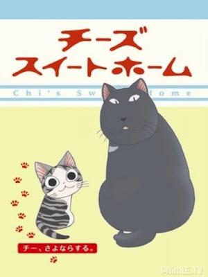 Mái ấm của mèo Chii