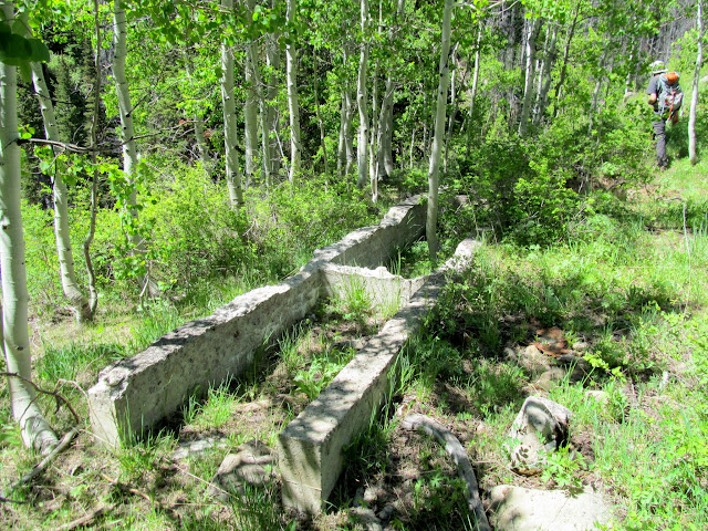 Concrete foundation at an old lumber mill