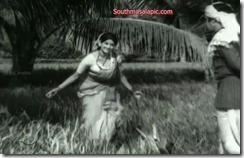 Kanchana Hot 95