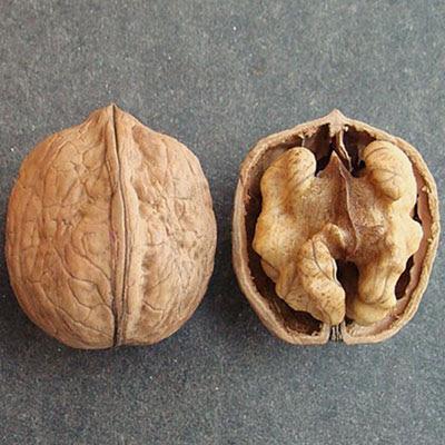 Кодрене грецкий орех