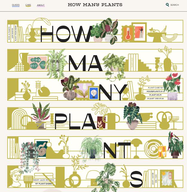 guia-online-para-cuidar-de-plantas