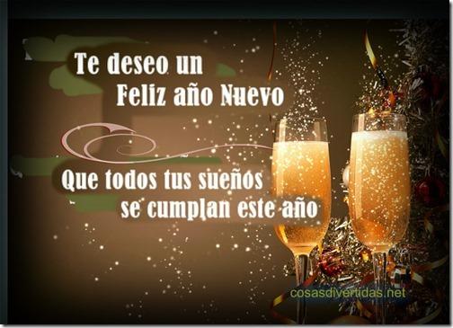 feliz anño nuevo 2017 (6)