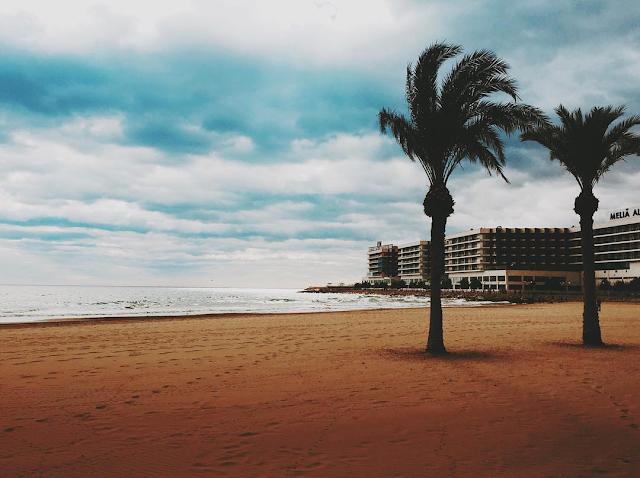 Se ve una playa, en la esquina derecha se erige un hotel. En la parte derecha hay dos palmeras solitarias. No hay nadie y el cielo está salpicado de algunas nubes.