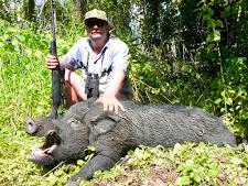 wild-boar-hunting-8.jpg