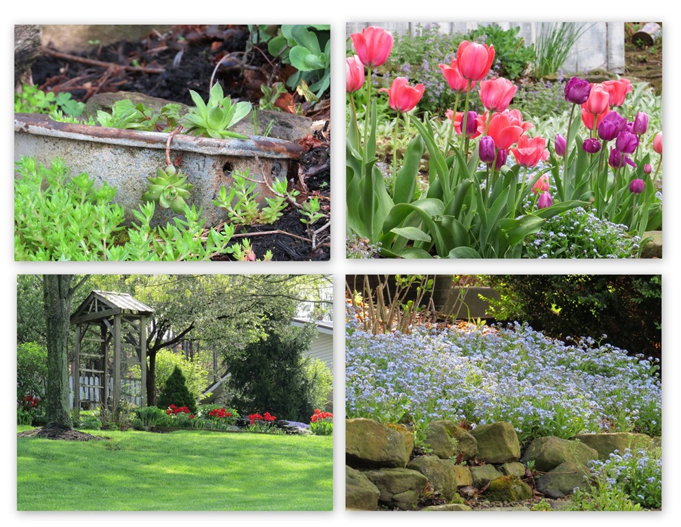 [Spring-time-blessings24]