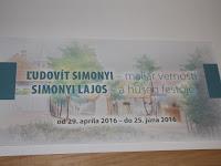 02 Simonyi Lajos, a hűség festője.JPG