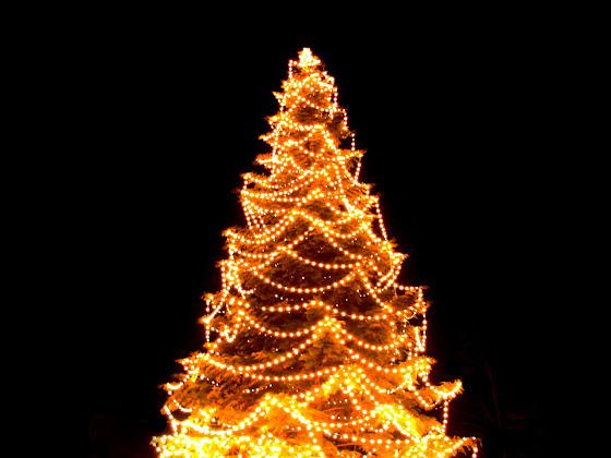 besplatne Božićne pozadine za desktop 1280x960 free download blagdani čestitke Merry Christmas