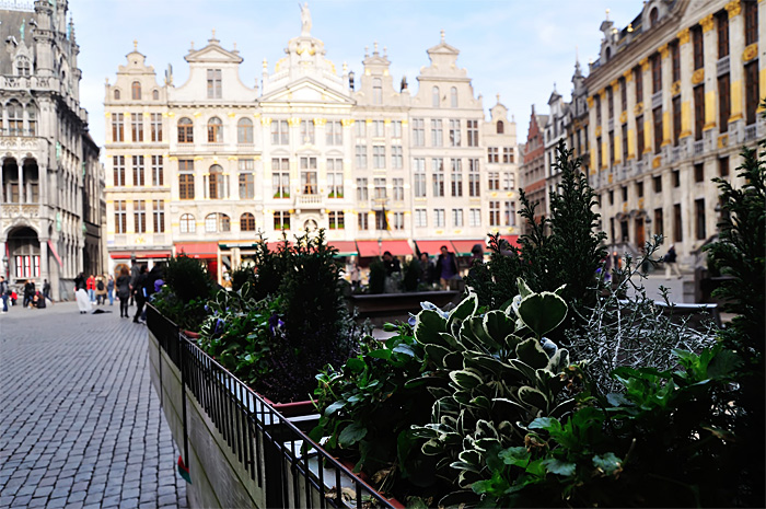 Bruxelles31.JPG
