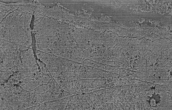 Геоглифи южного берега озера Балхаш 2